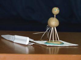Подведены итоги конкурсов физических приборов учащихся