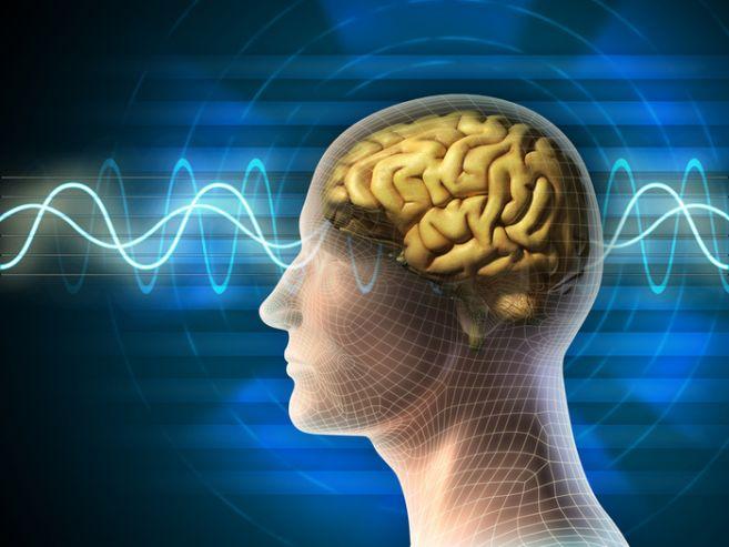 Формирование безусловных рефлексов андроида на основе биоквантовой психологии