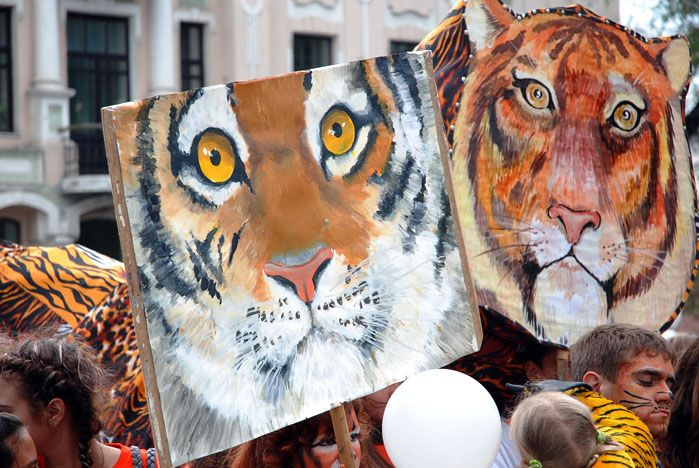 Студенты ВГУЭС стали активными участниками карнавального шествия Дня Тигра