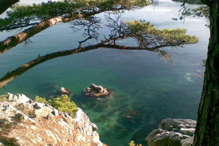 Экологический туризм в Приморском крае