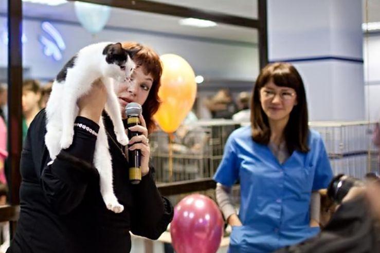 Благотворительная выставка бездомных животных собрала более 1000 сочувствующих
