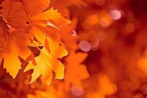 Осенний бал для учащихся начальной школы ШИОД