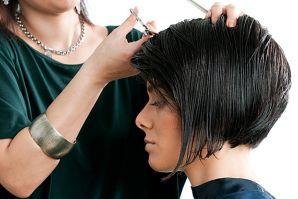 Начните обучение в школе фотографа, парикмахера или закройщика!