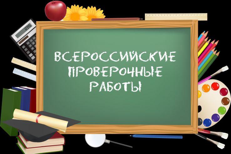 Лицеисты 4 и 5 классов  прошли проверочные работы Федеральная служба по надзору в сфере образования и науки