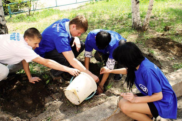 Волонтерскую аллею заложили в Благовещенске студенты ВГУЭС