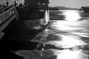 Приглашаем принять участие в конкурсе фото и видео «В объективе – Владивосток»