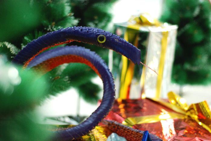 ВГУЭС «принарядился» к Новому году