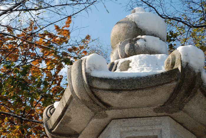 Первый снег во ВГУЭС. Фото
