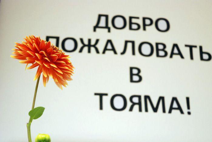 Осеннее настроение во ВГУЭС создает открывшаяся выставка икебаны и каллиграфии