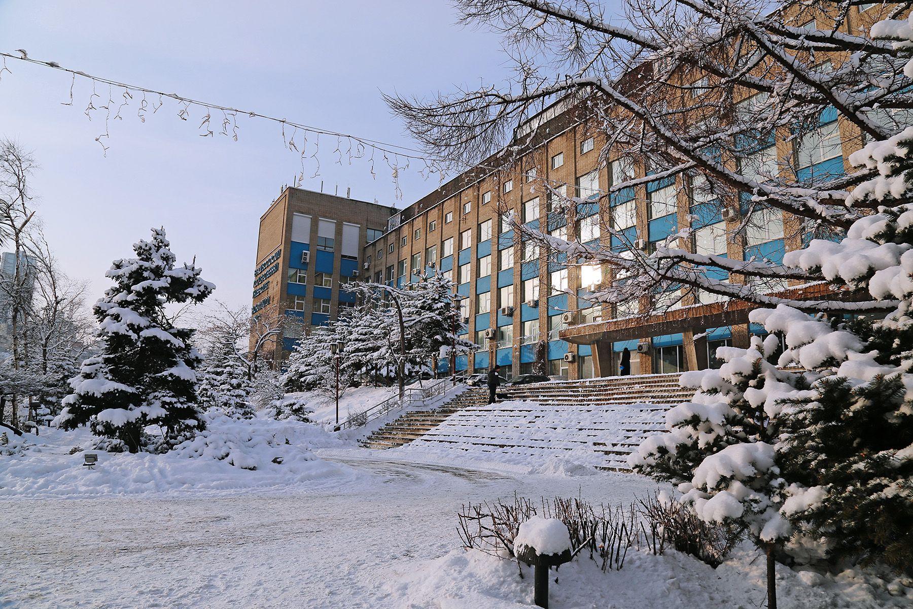 Зимняя сказка: первый новогодний снег во ВГУЭС
